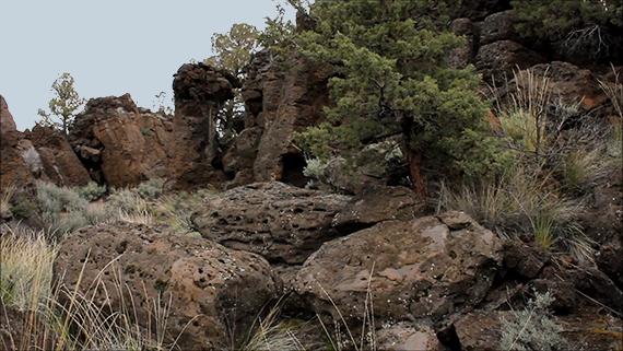 Lava Rocks And Juniper, Oregon Badlands Wilderness